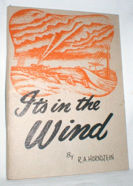 Image for It's in the Wind