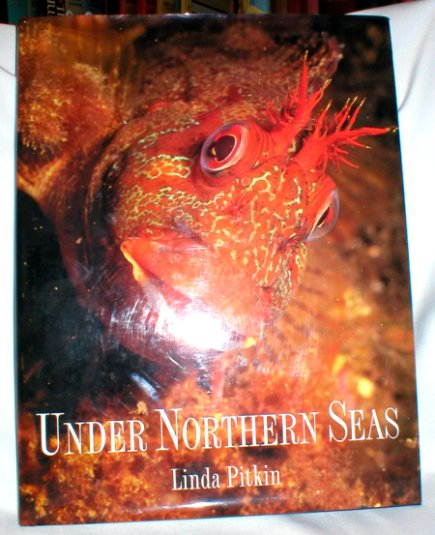 Image for Under Northern Seas