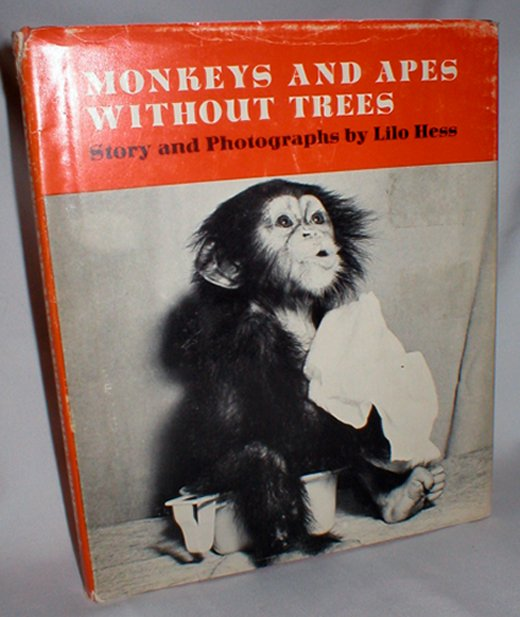 Image for Monkeys and Apes Without Trees
