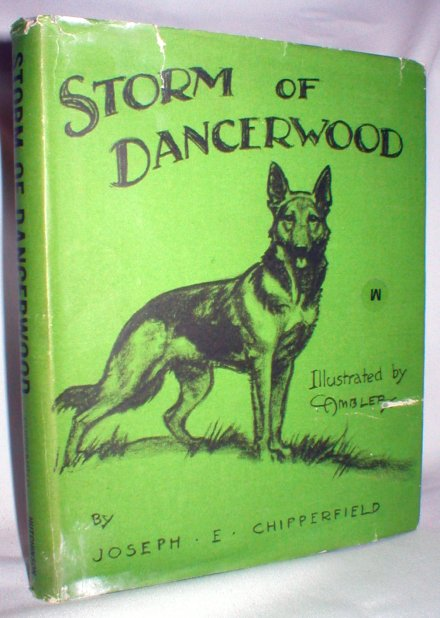 Image for Storm of Dancerwood; Chestnut Library