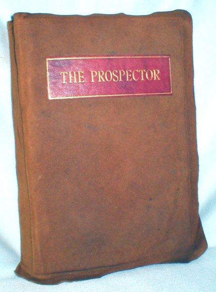 Image for The Prospector; A Tale of the Crow's Nest Pass