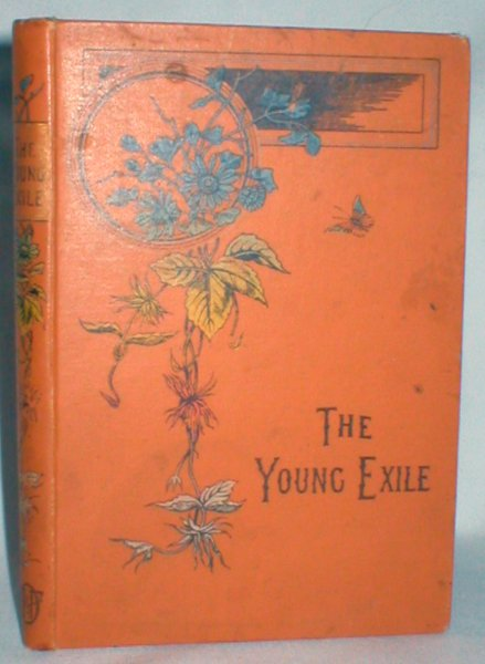 Image for The Young Exile; or the Story of a Spanish Jew
