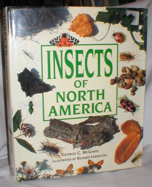Image for Insects of North America