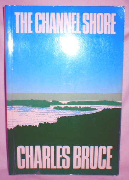 Image for The Channel Shore (A Novel)