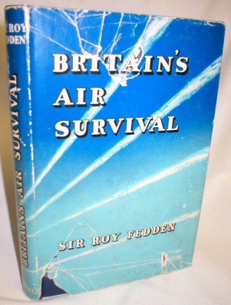 Image for Britain's Air Survival