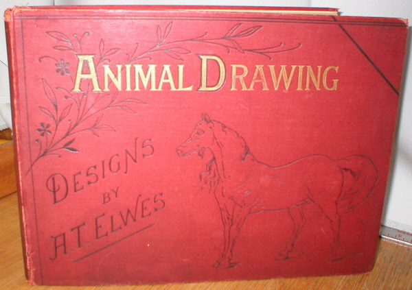 Image for Animal Drawing; A Series of Graduated Drawing Copies of Animals
