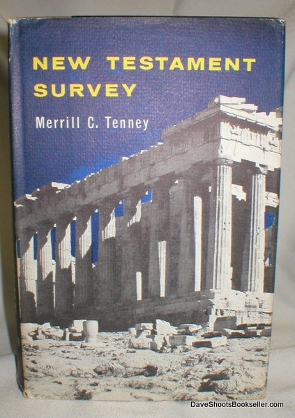 Image for New Testament Survey