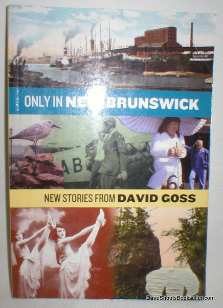 Image for Only in New Brunswick; New Stories from David Goss