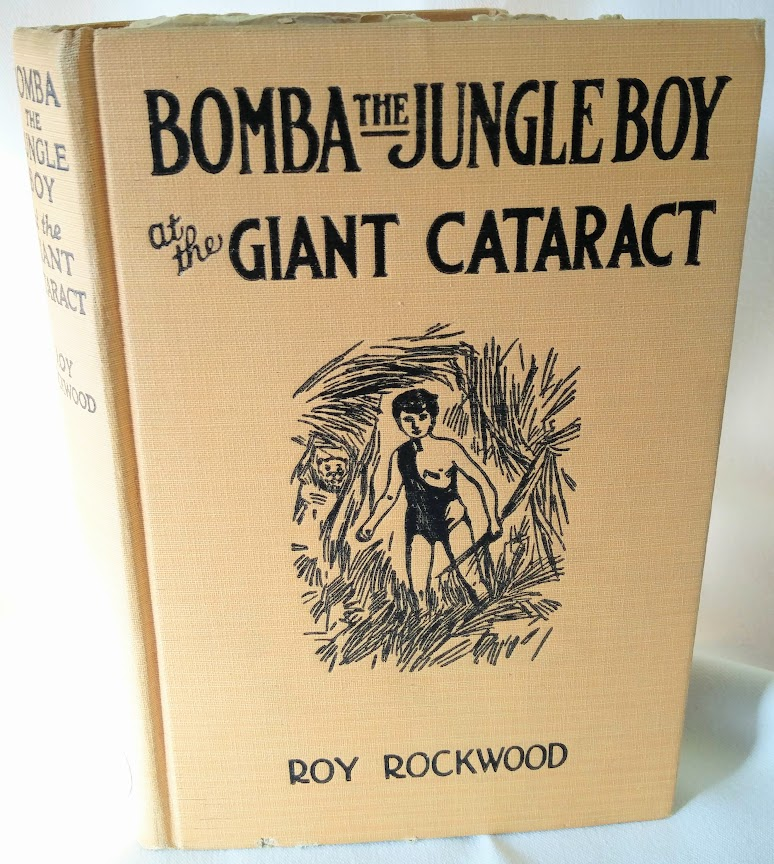 Image for Bomba the Jungle Boy at the Giant Cataract