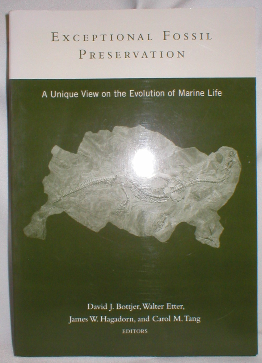 Image for Exceptional Fossil Preservation; A Unique View on the Evolution of Marine Life
