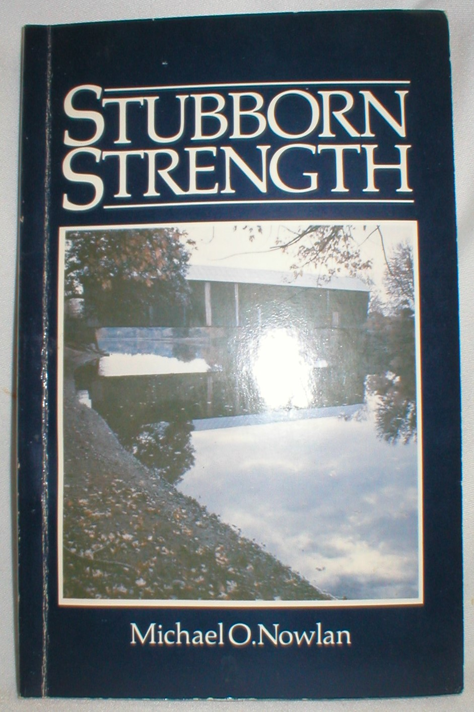 Image for Stubborn Strength; A New Brunswick Anthology