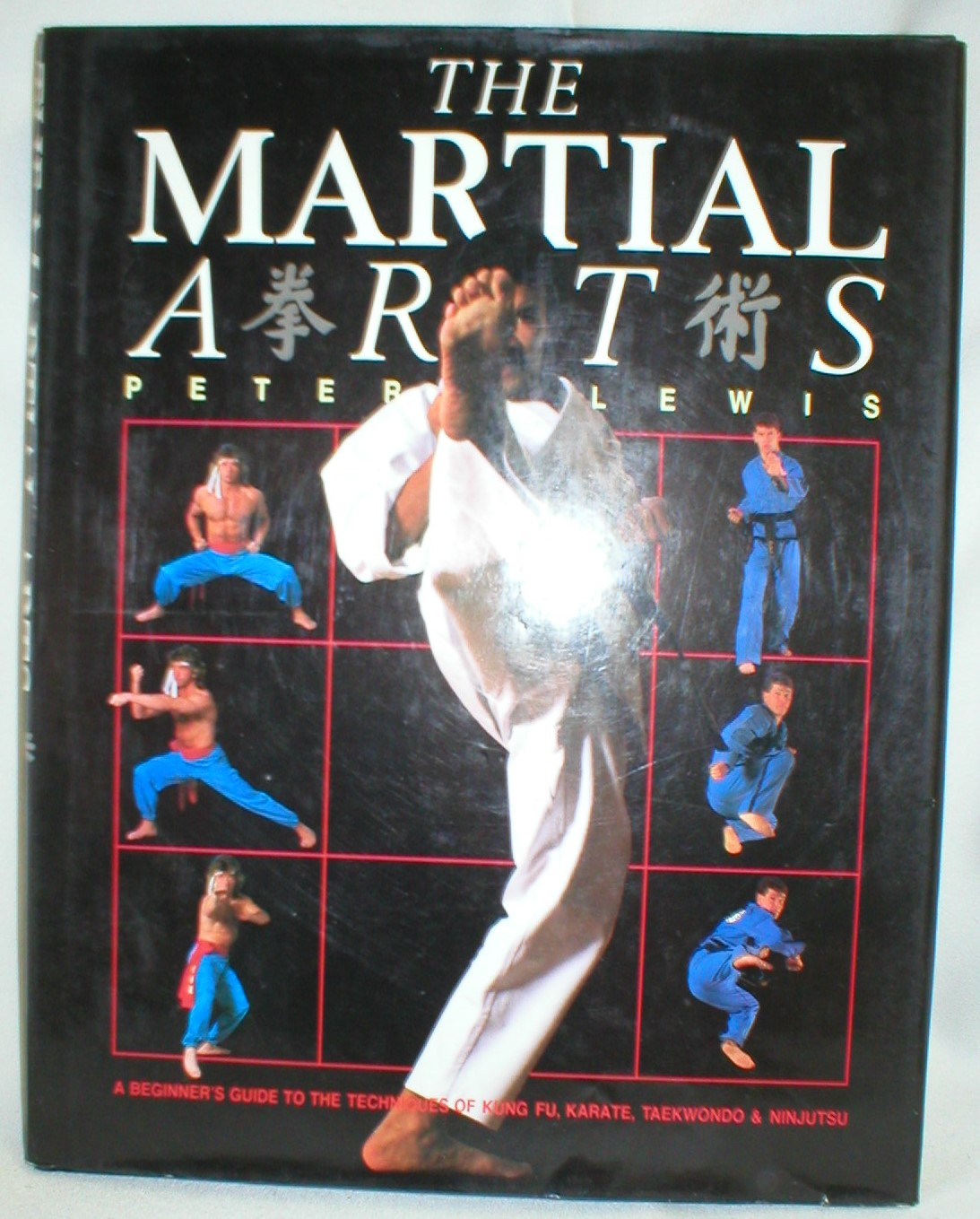 Image for The Martial Arts