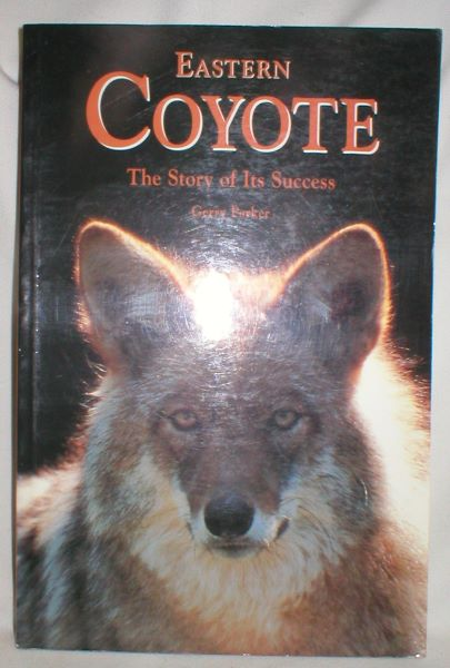 Image for Eastern Coyote; The Story of Its Success